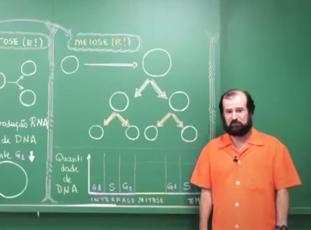 Divisão Celular (Mitose e Meiose)