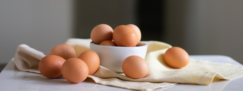O que são proteínas? Saiba o que pode cair no vestibular