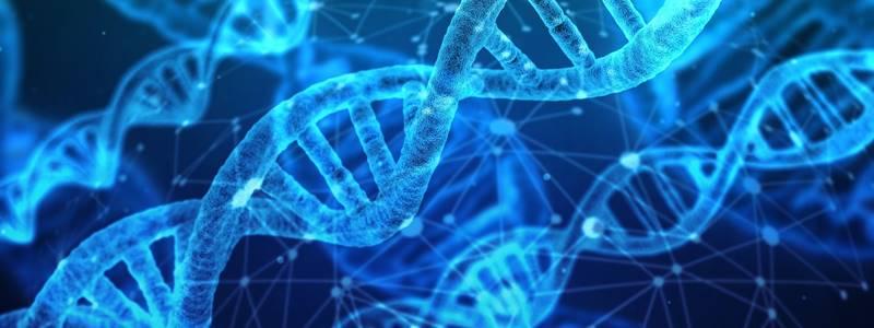 O que é epigenética? Indo além dos genes