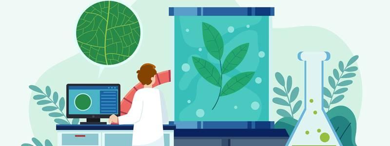 Bioquímica – Entenda mais sobre essa ciência
