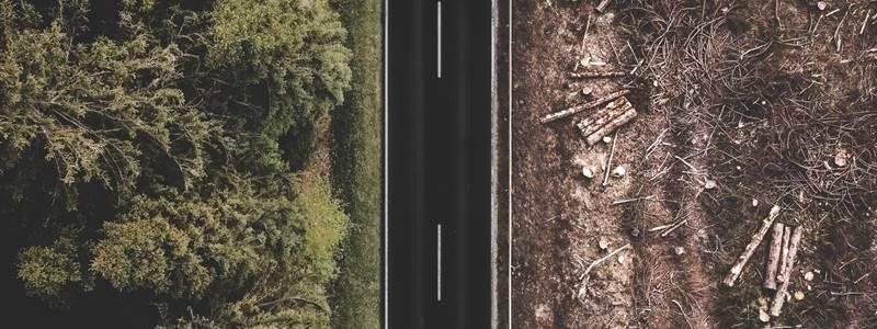 Desequilíbrio ambiental: causas e fatores